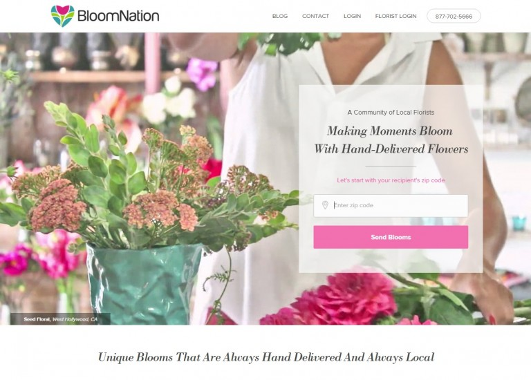 Email Marketing – BloomNation Help Center & Resources